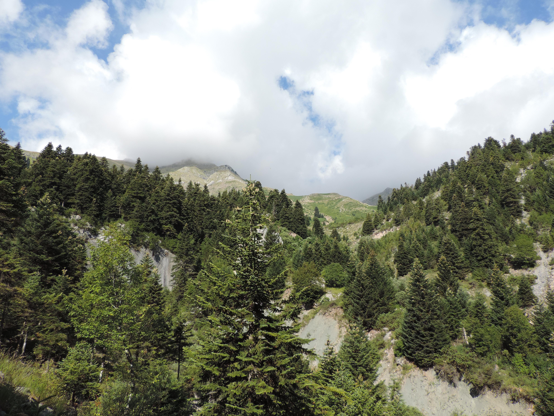 Mount 3