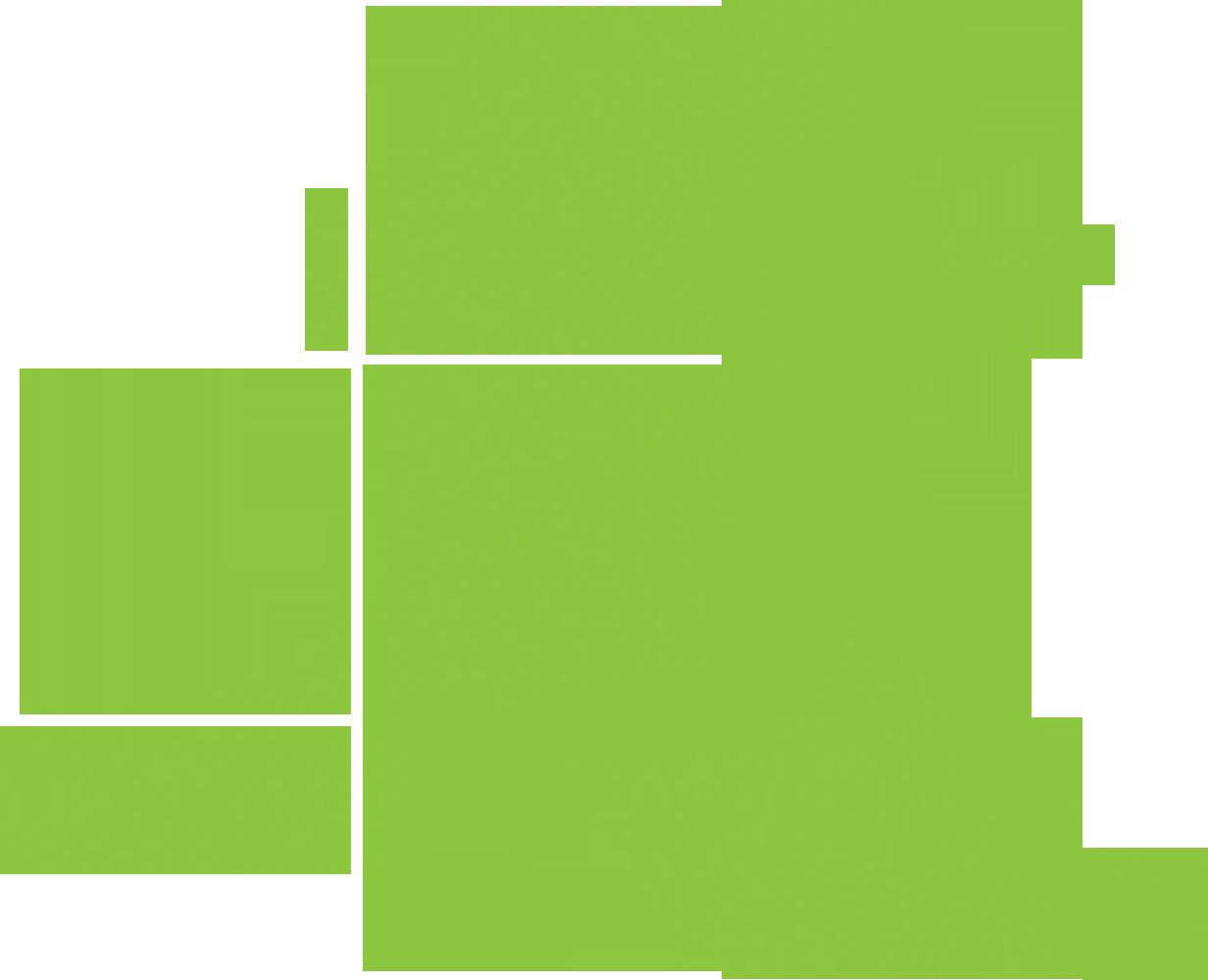 rdr-runner
